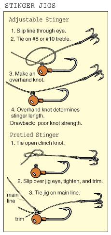 wi0502_Stingers3[1]