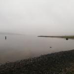 10 fisk idag - 13 tur i streg med fisk i fjorden