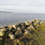 Tur 4 Havnø Fredag d. 17-1